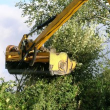 Hedge cutting – Flail